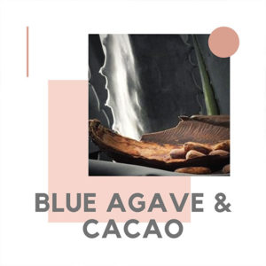 blush-blue-agave-cacao